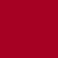 srpsko-udruzenje-cirilica